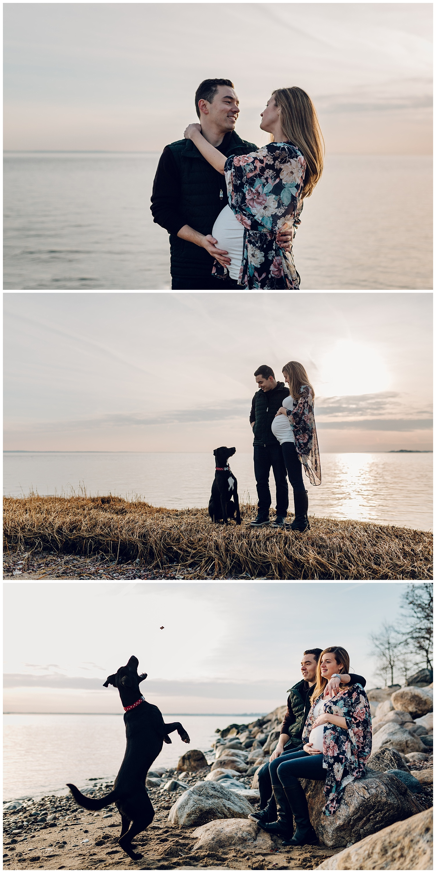 maternity photos at the beach with dog in greenwich ct