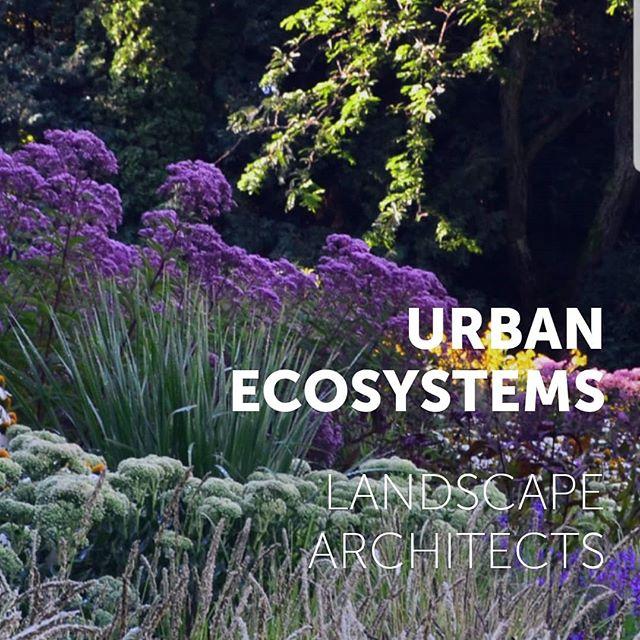 Hot off the press! www.urbanecosystemsinc.com Web design by @marit_emc2 #website #landarch #landscapearchitecture #design #graphicdesign