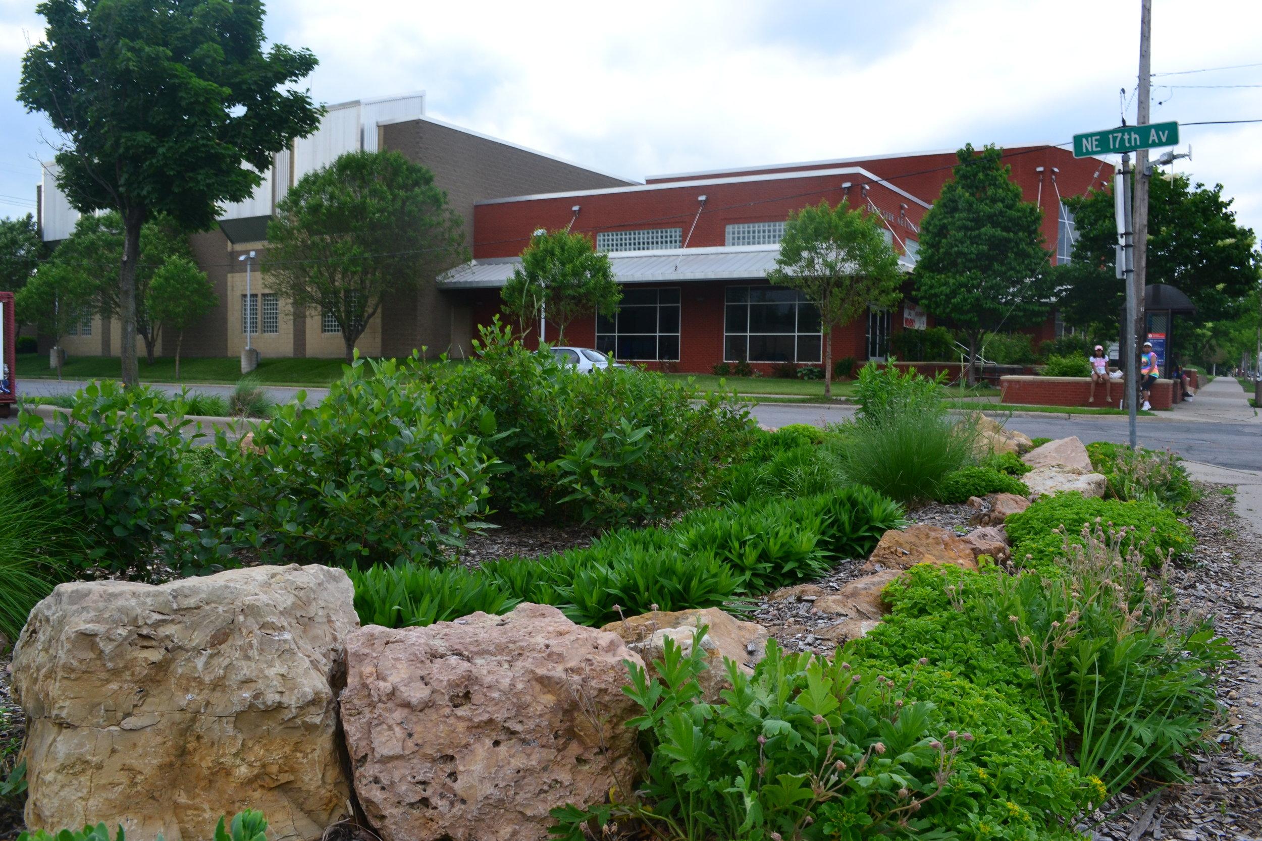 Rain Recharge Garden