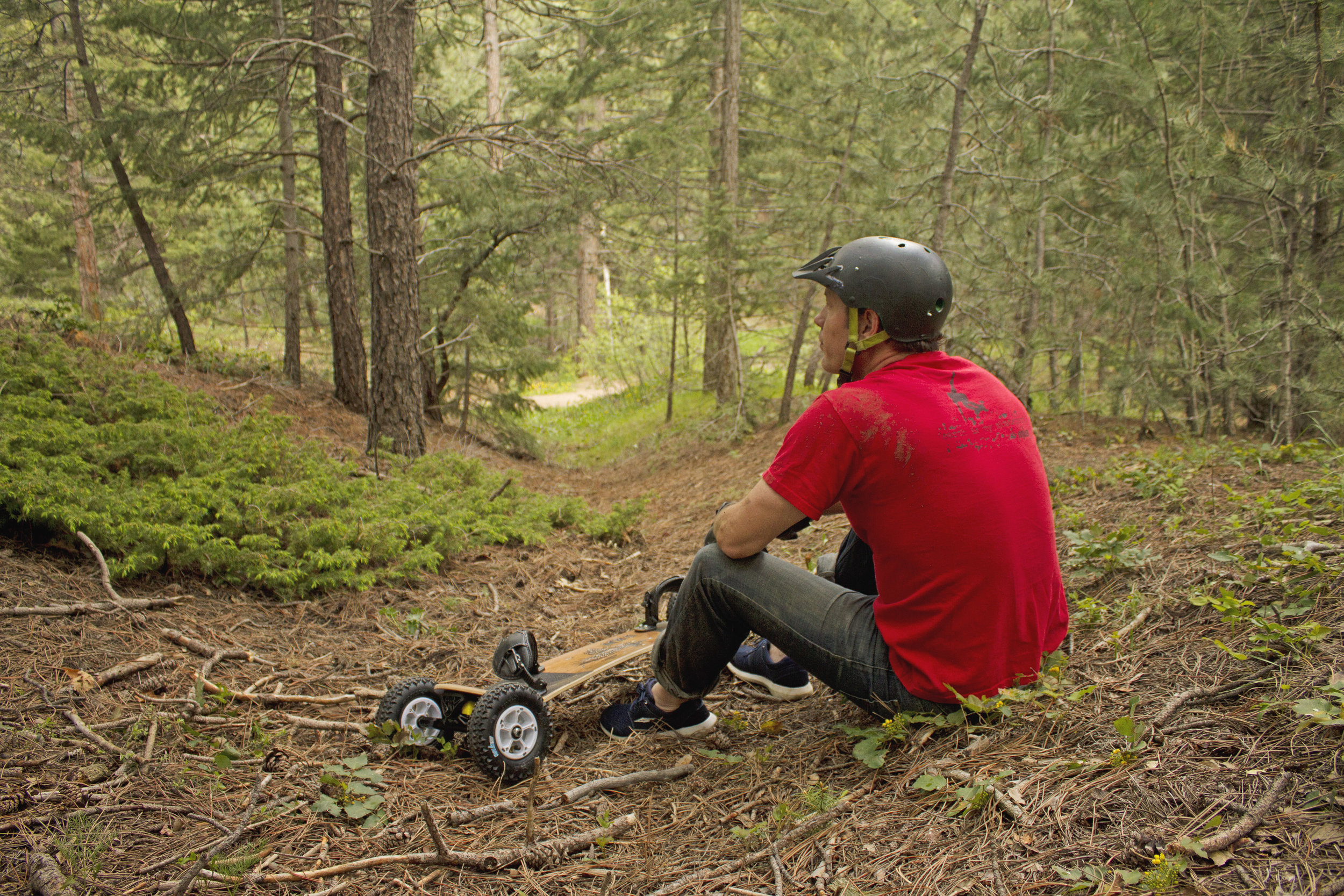 10301 - MBS Comp 95 Mountainboard - Birds - Lifestyle 1.jpg