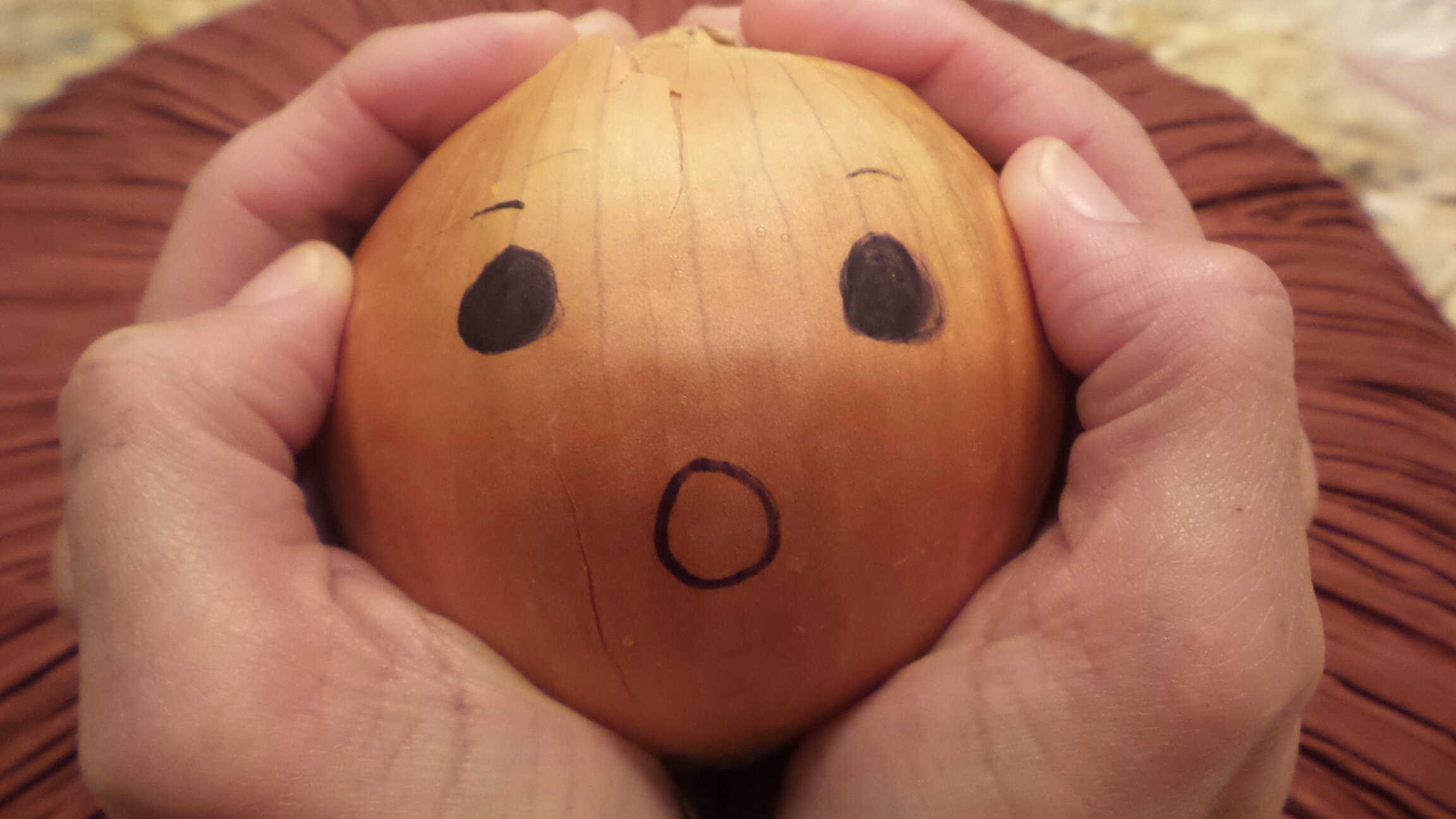 Onion in hands.jpg