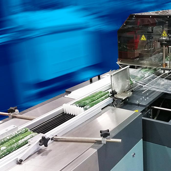 PackFlight Conveyor System Infeeding Sealed Air Shanklin Shrink Wrapper