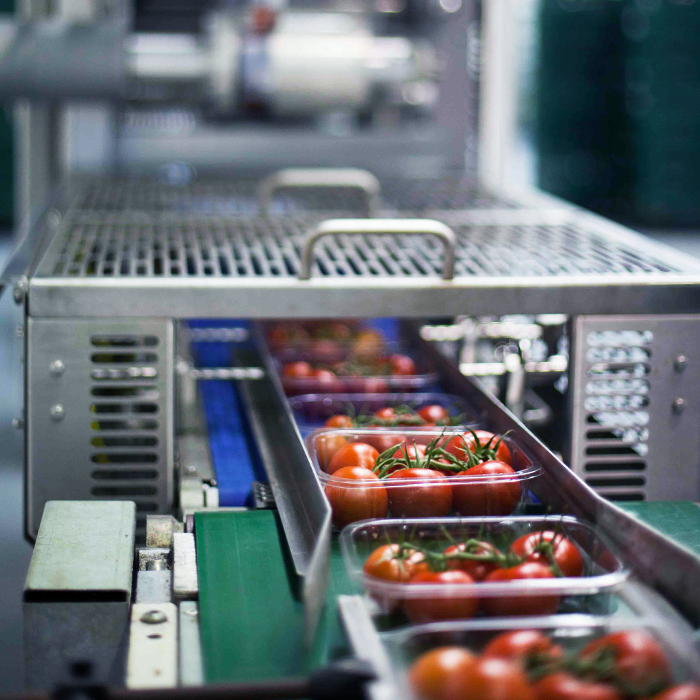 Packaging Automation Eclipse SL6 Top Seal Machine Packaging Trays of Tomatoes