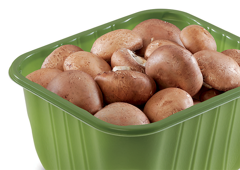 Green Mushroom Packaging Tray Filled with Fresh Mushrooms