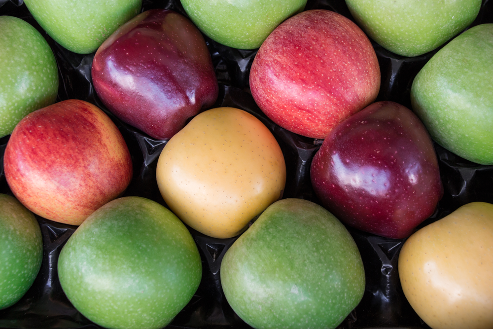 various colours of apples on black GrowPack Insert Tray
