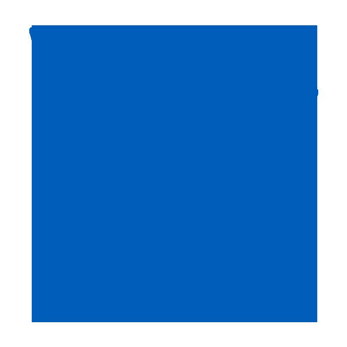 blue leaf icon