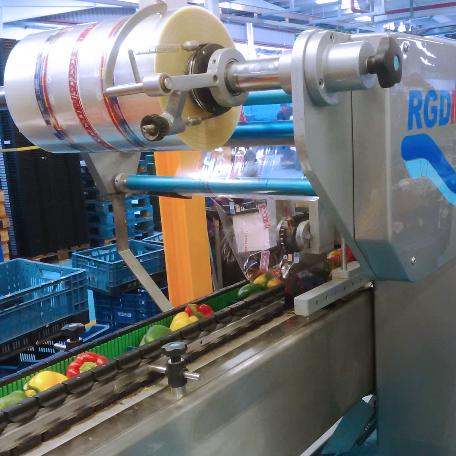rgd mape flow wrap machine packing bell peppers in packaging facility