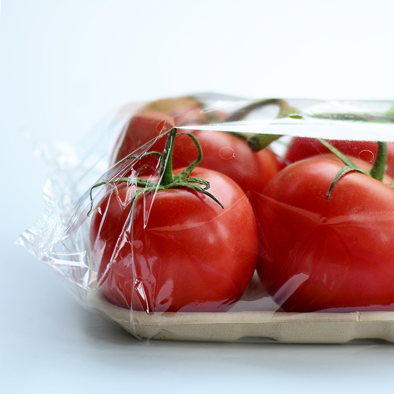 tomatoes packaged in flow wrap with fibre tray on blue background