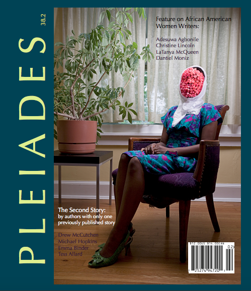 Drew McCutchen Pleiades Press Issue 38.2 The Falling Out.png