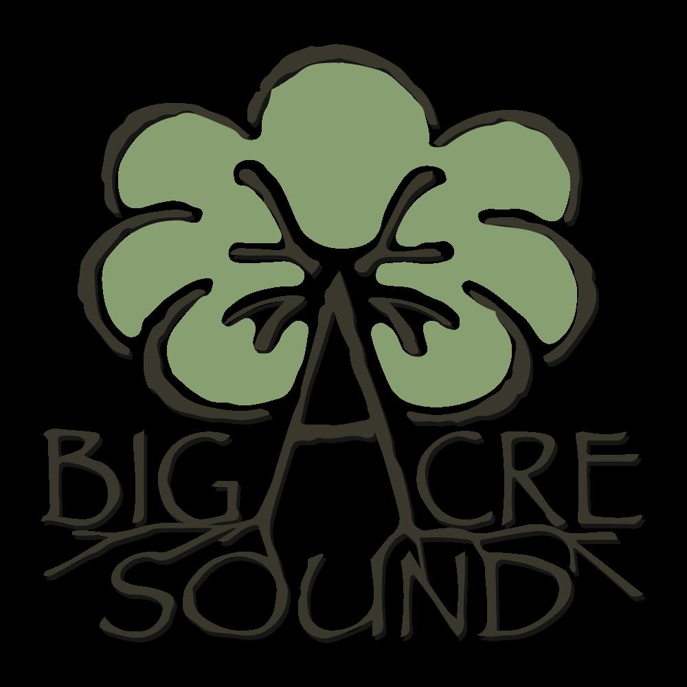 Big Acre Sound Studios (Copper Canyon, TX)