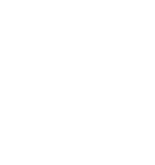 gan-accel_white.png