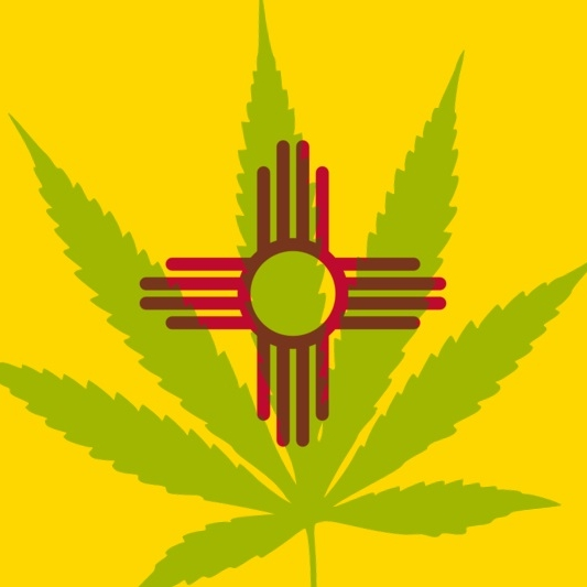 New Mexico - In 2007, The Lynn and Erin Compassionate Use Act (Senate Bill 523) was passed to remove state-level criminal penalties on the use and possession of marijuana by patients, in a regulated system for alleviating symptoms caused by debilitating medical conditions and their medical treatments.