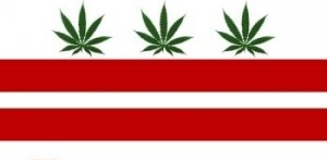 District of Columbia - In 2010, the Legalization of Marijuana for Medical Treatment Amendment Act of 2010 was signed by the Mayor to allow for qualifying patients in the District the right to obtain and use marijuana for medical purposes when his or her primary healthcare practitioner has provided a written recommendation.