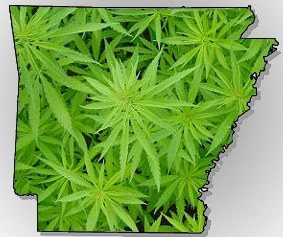 Arkansas - In 2016, voters approved Ballot Measure Issue 6 by 53.2% to enact a Constitutional amendment making medical marijuana legal in Arkansas and establishing a system for cultivation, acquisition, and distribution of marijuana.