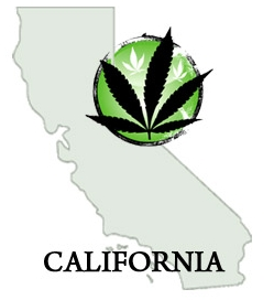 California - In 1996, voters approved Proposition 215 by 56% to remove state-level criminal penalties on the use, possession and cultivation of marijuana by patients who possess a
