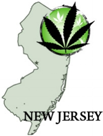 New Jersey - In 2010, Governor Jon signed into law Senate Bill 119 that protects patients who use marijuana to alleviate suffering from debilitating medical conditions, as well as their physicians, primary caregivers, and those who are authorized to produce marijuana for medical purposes from arrest, prosecution, property forfeiture, and criminal and other penalties.