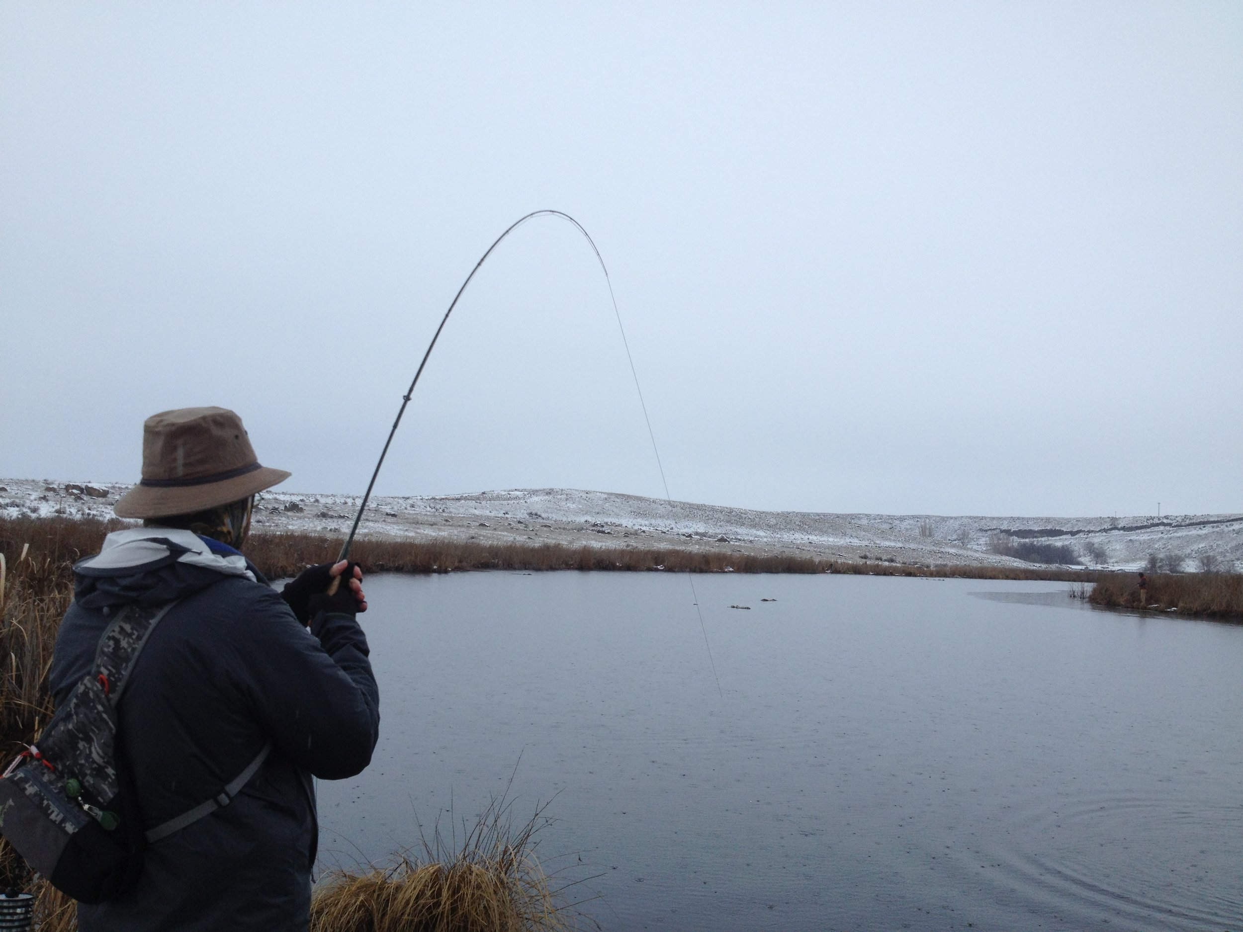 Angler fly fishing Rocky Ford Creek in Central Washington