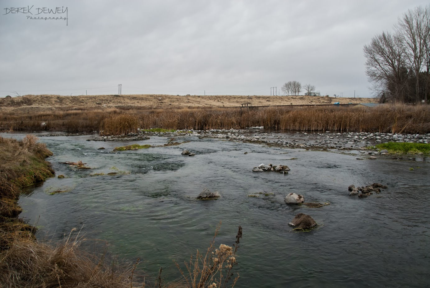 RF Water 2.jpg