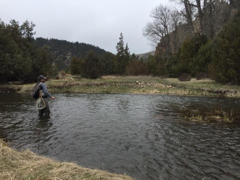Stefan fishes Rock Creek