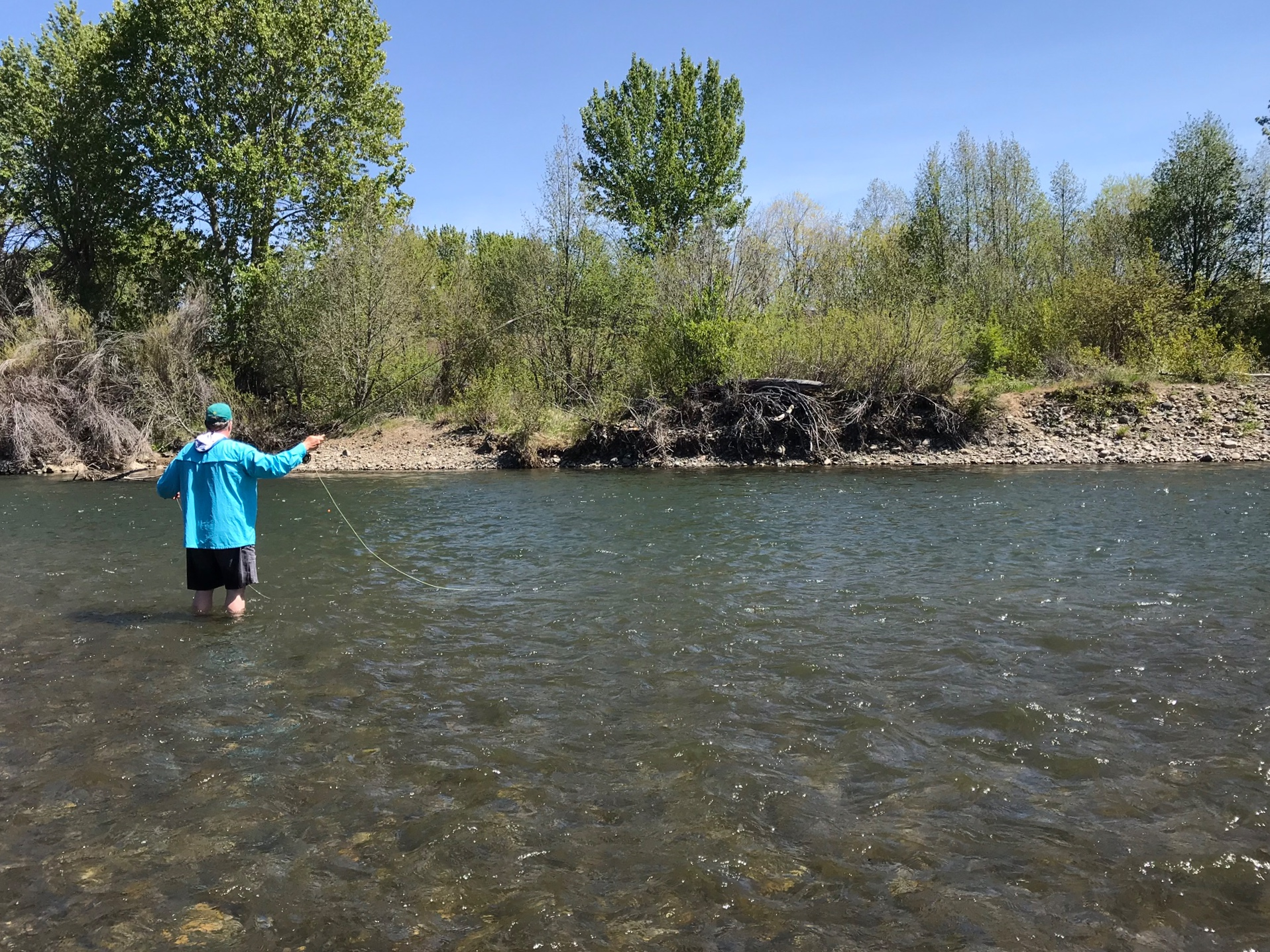 Fly fishing the Yakima River
