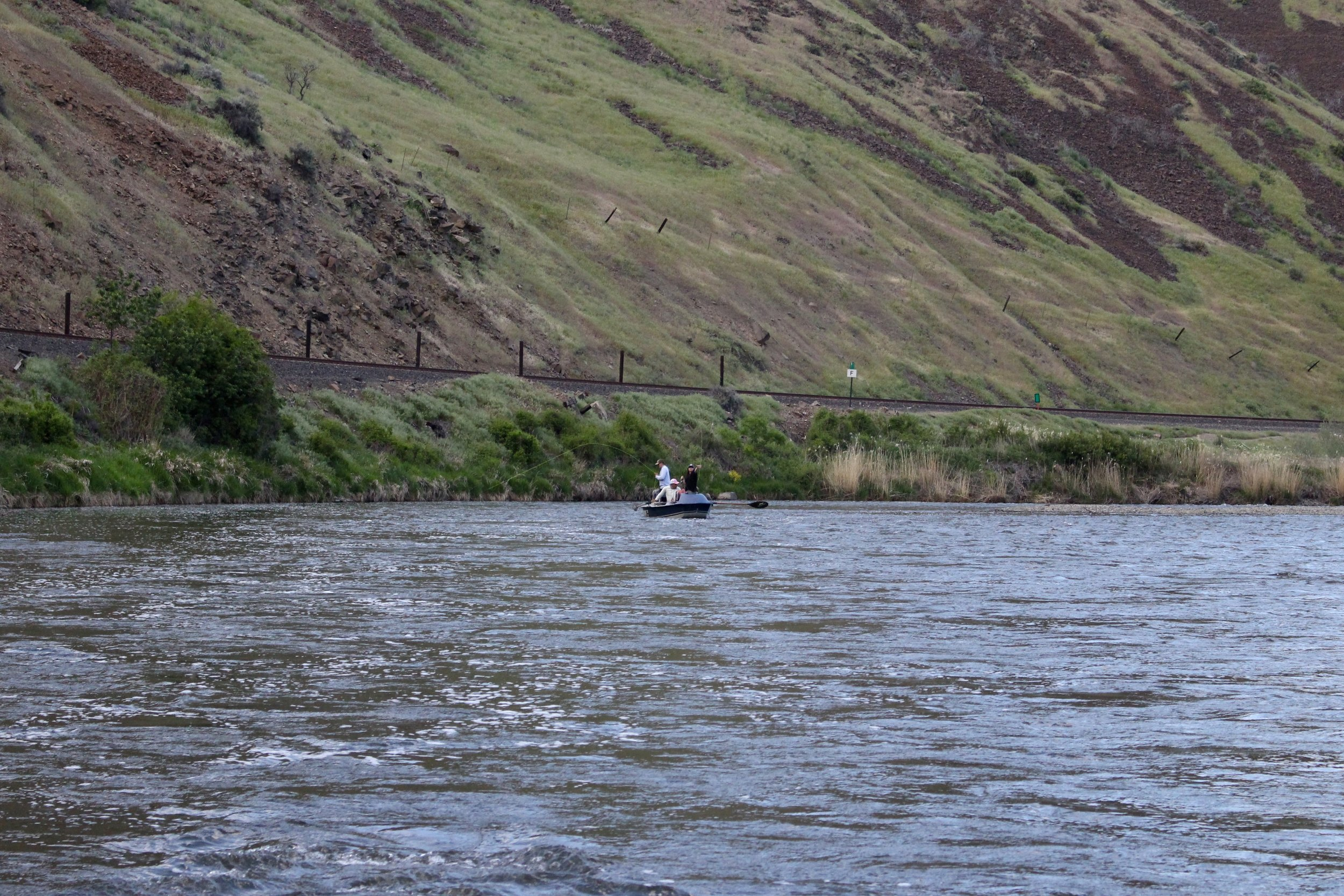 Fly Fishing the Evening Caddisfly Hatch on the Yakima River