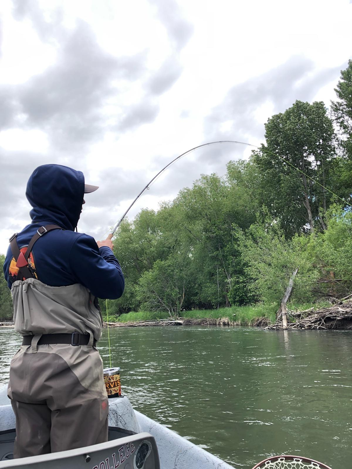 Kyle fighting a Yakima River Rainbow Trout