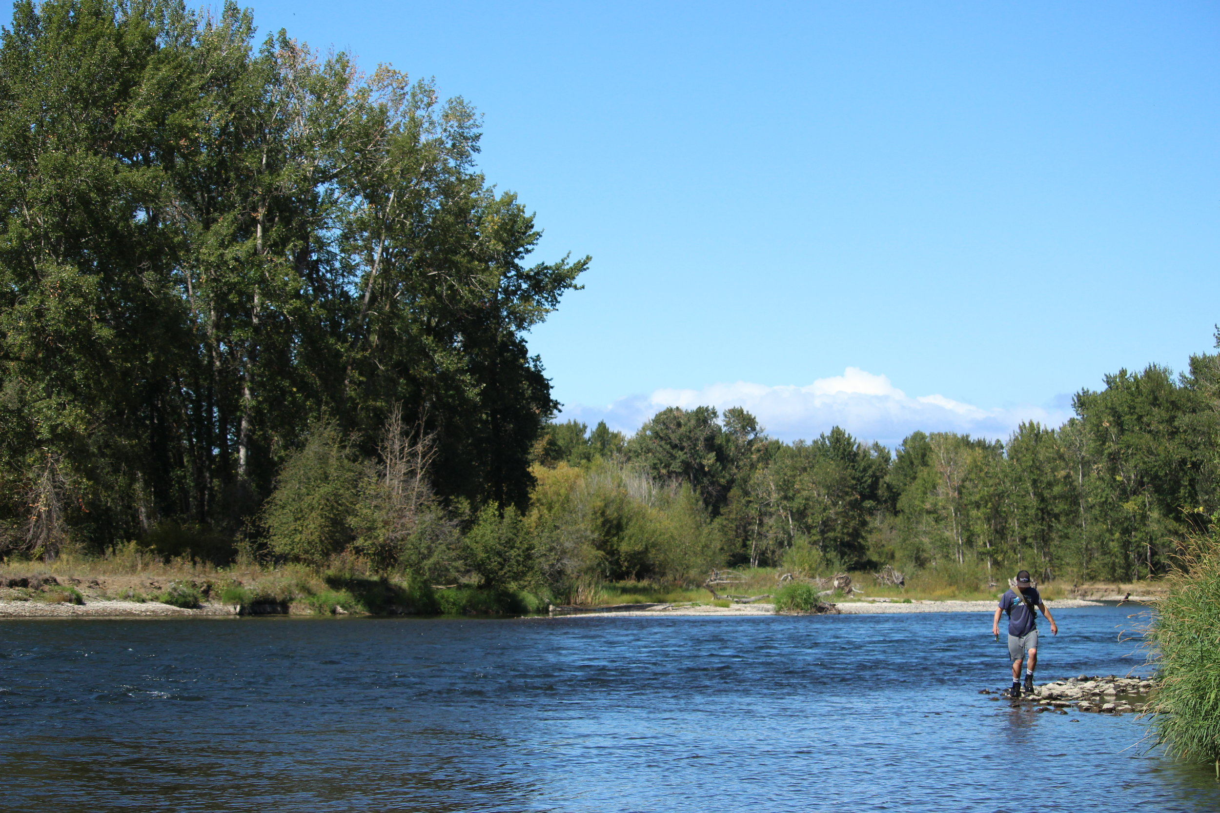 Yakima River Fishing Report