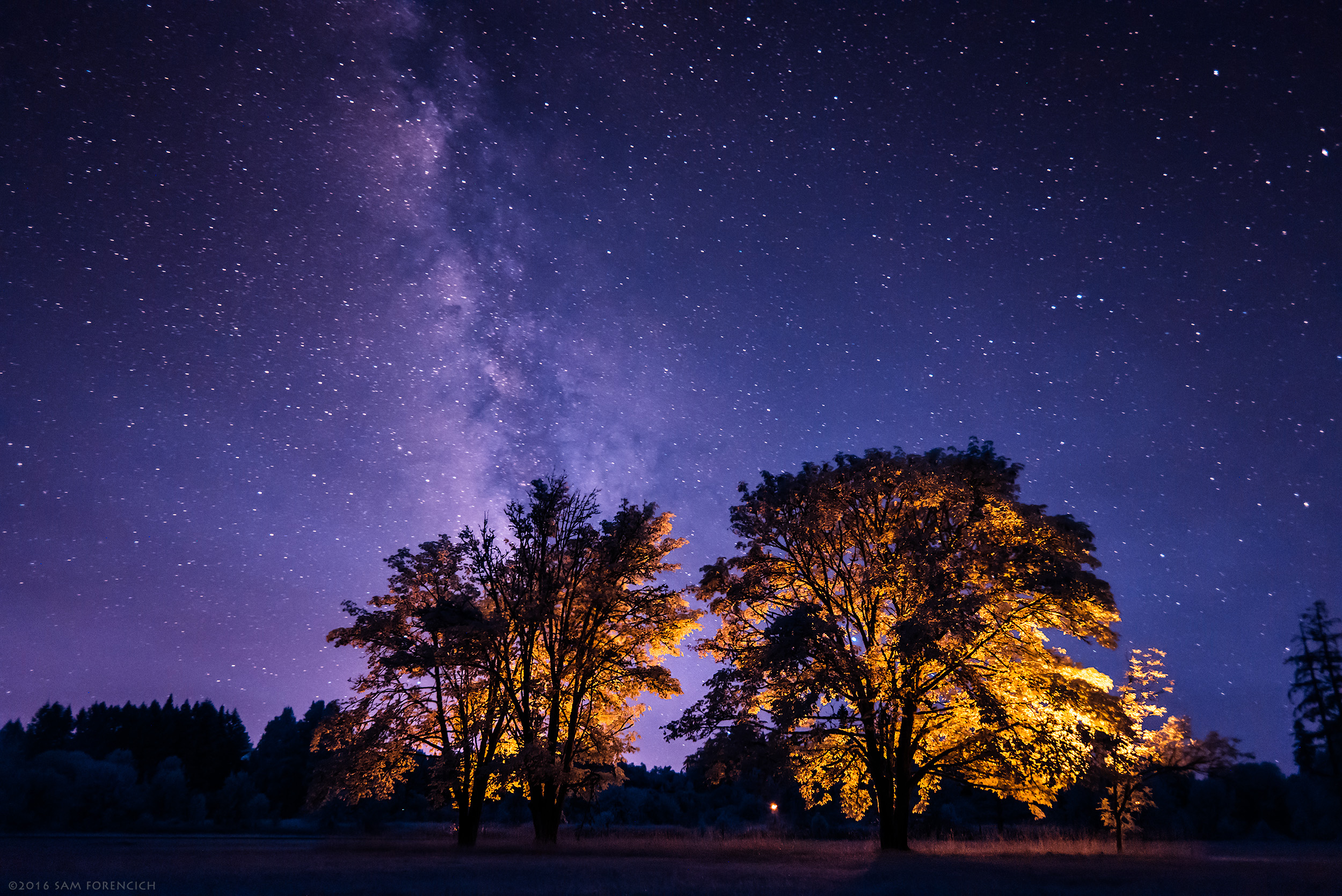 The Milky Way tracks a path over Oregon's Champoeg State Park. Still image from Invisible Oregon time-lapse sequence. IR converted Nikon D750. Trees artificially illuminated. © 2016 Sam Forencich