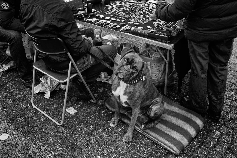 Portfolio_Street_Roma_2014_Porta_Portese_03.jpg