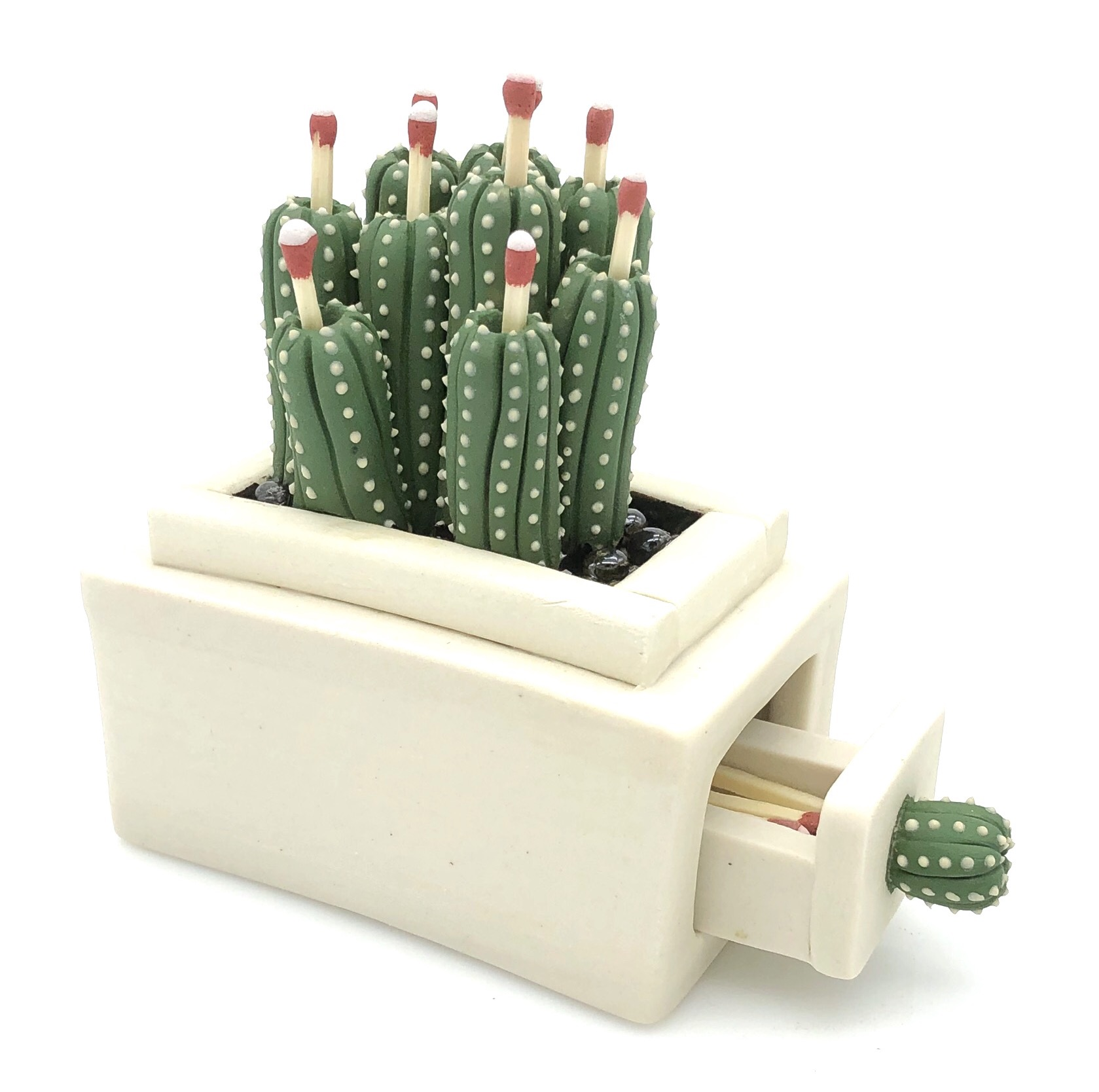 3_Organ_Pipe_Cactus_Bloom_Match_Box_&_Striker.JPG