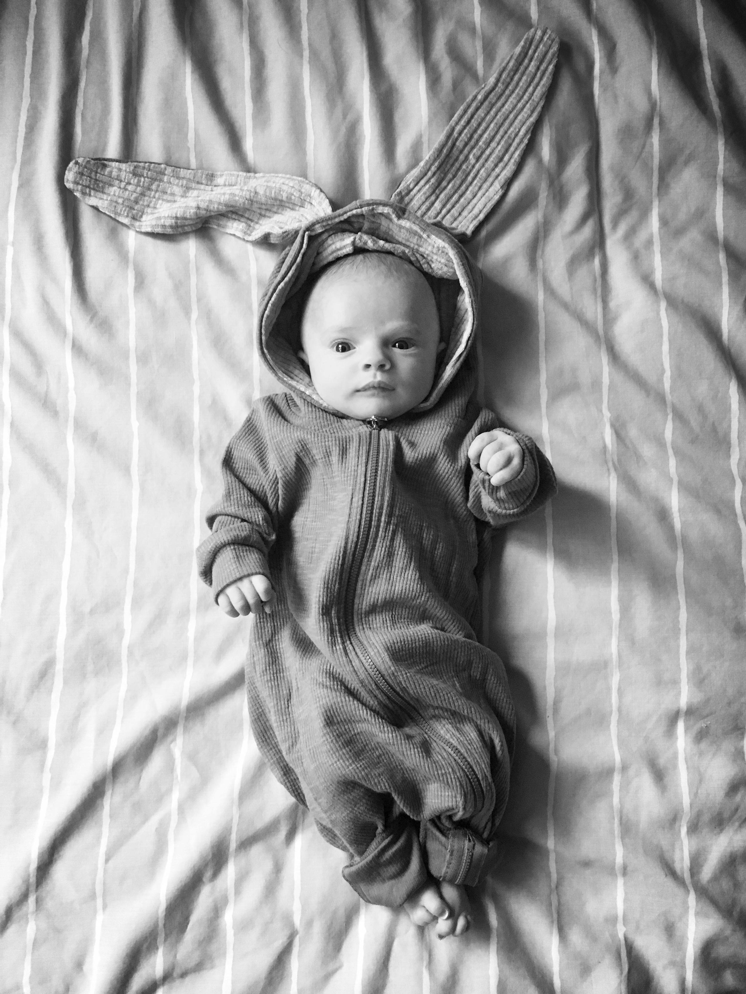 Hypnobirthing baby rabbit Sylvie!
