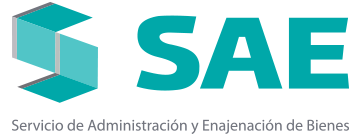 logo-sae-21.png