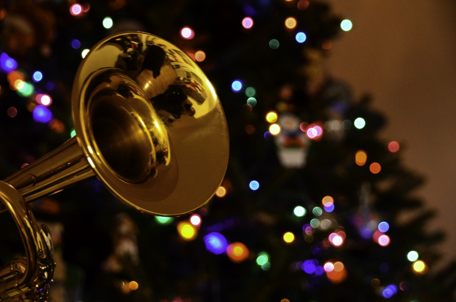 Presenting also  Gulf Coast Brass :  Danny Wilson, Trumpet, Andrew Wilson, Trumpet, Thomas Bacon, French Horn, Rick White, Trombone, David Kirk, Tuba