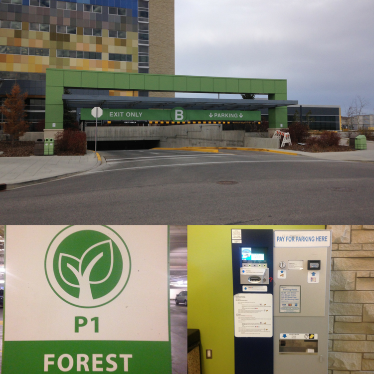 B OR FOREST LOT AT SOUTH HEALTH CAMPUS