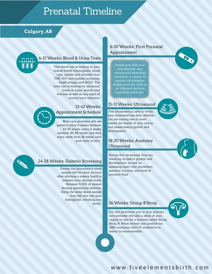 Navigating the Maternity System in Calgary Alberta Timeline.jpg