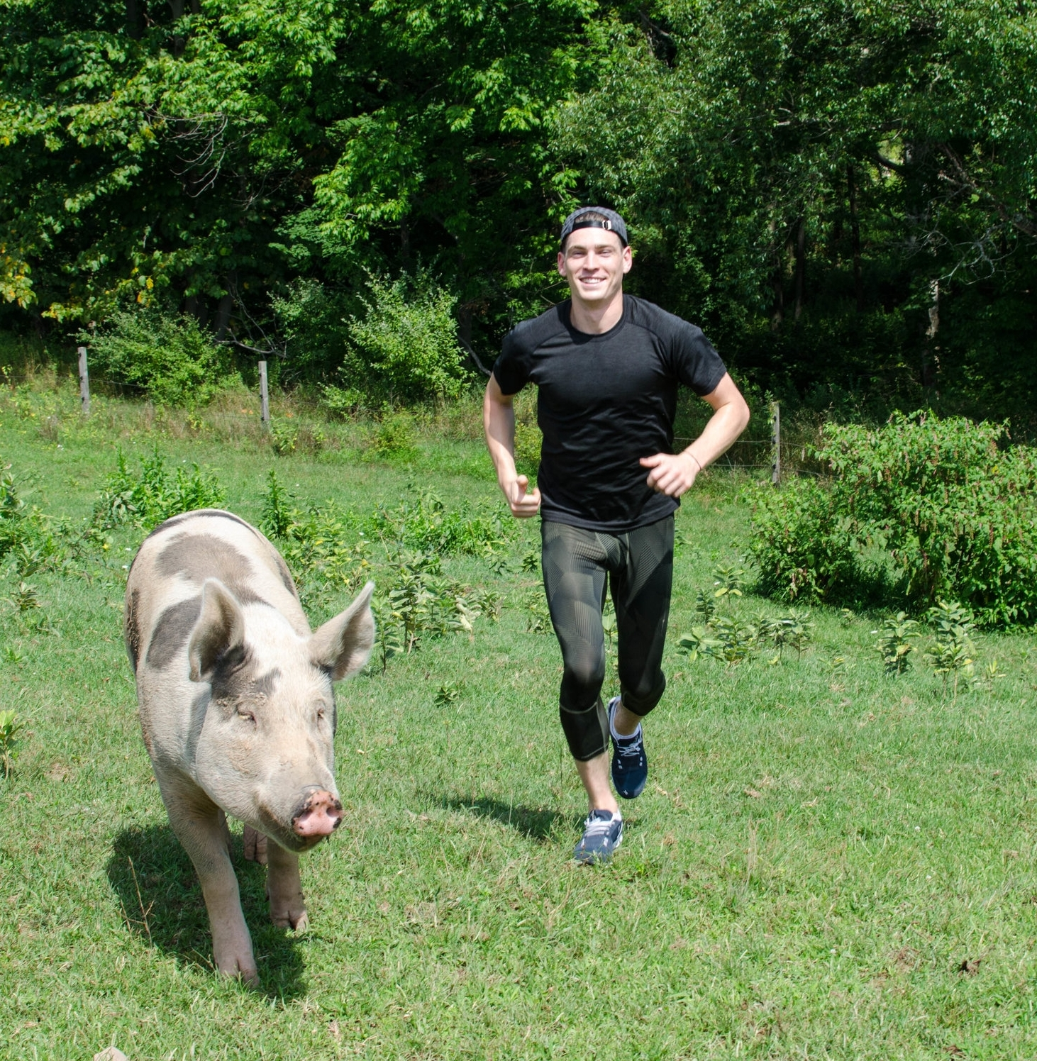 Dono & Pig.jpg