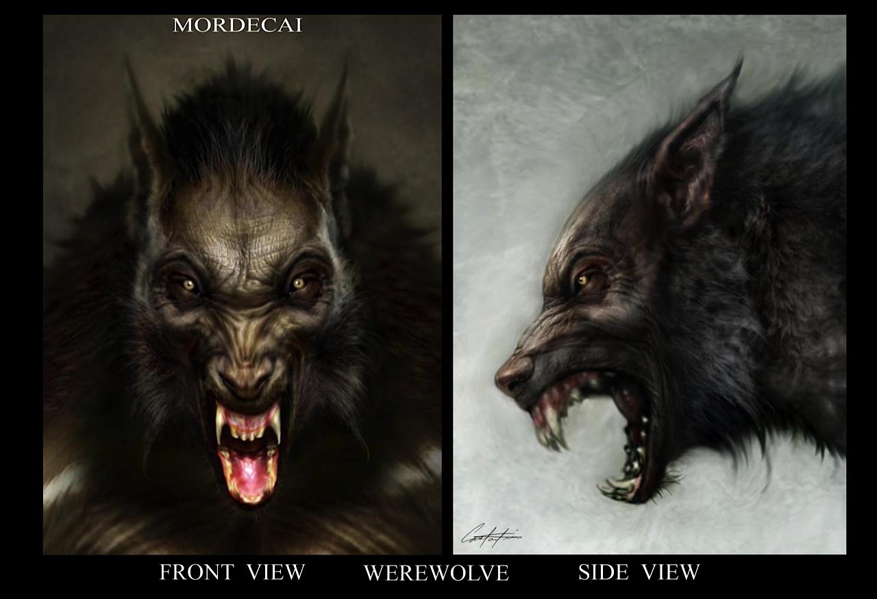 werewolf illustration - cabin in the woods