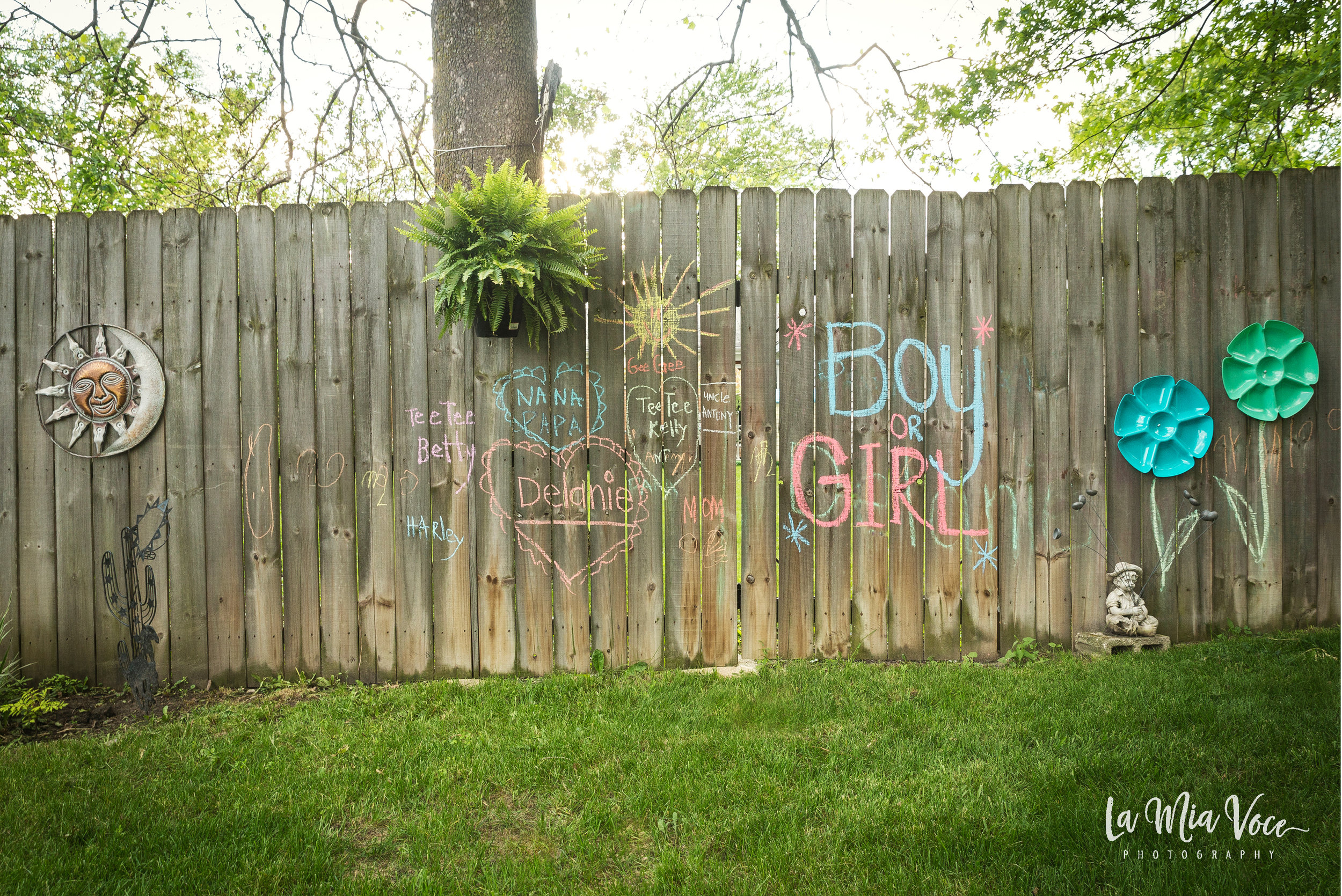 roche gender reveal_web_0517_2.jpg