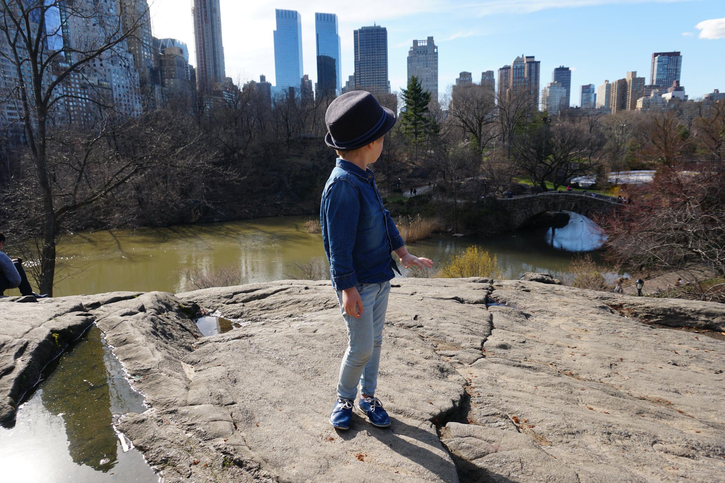 Central Park D.JPG