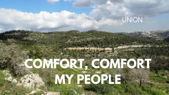 comfort.png