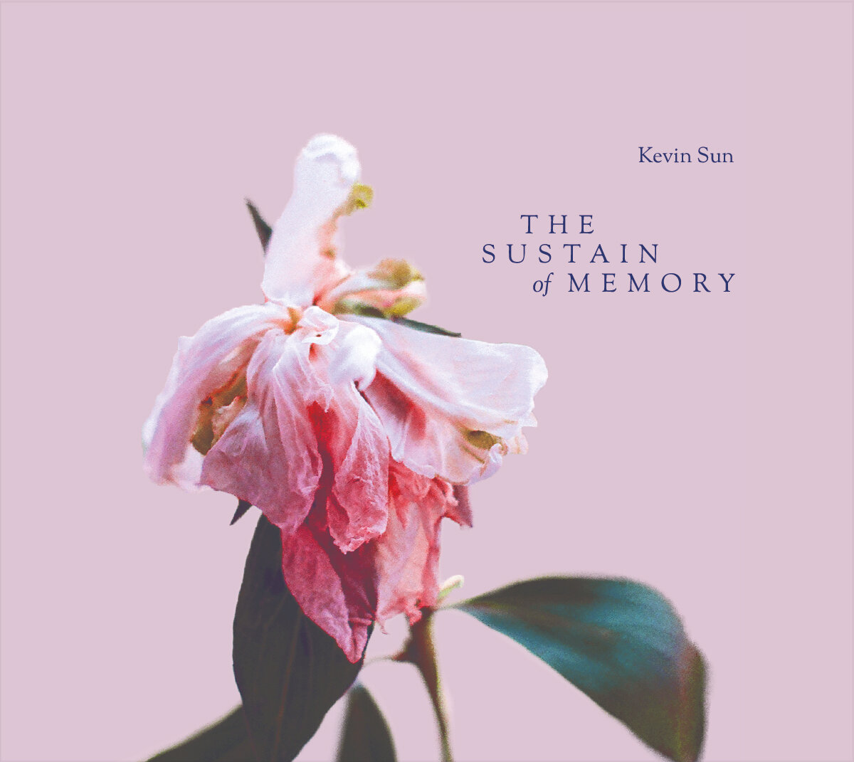 The Sustain of Memory — Album Cover.jpg
