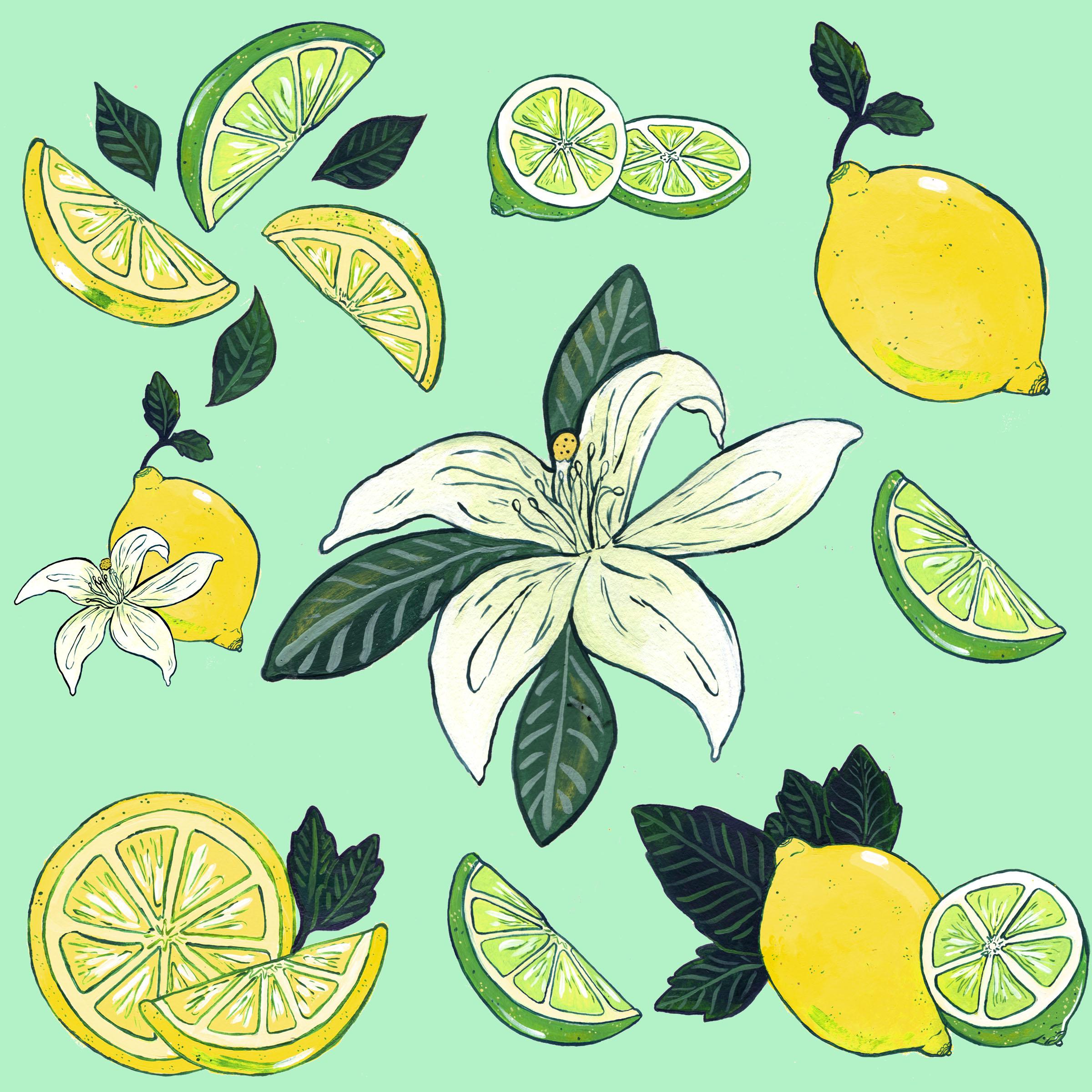 revised lemon lime swatch.jpg