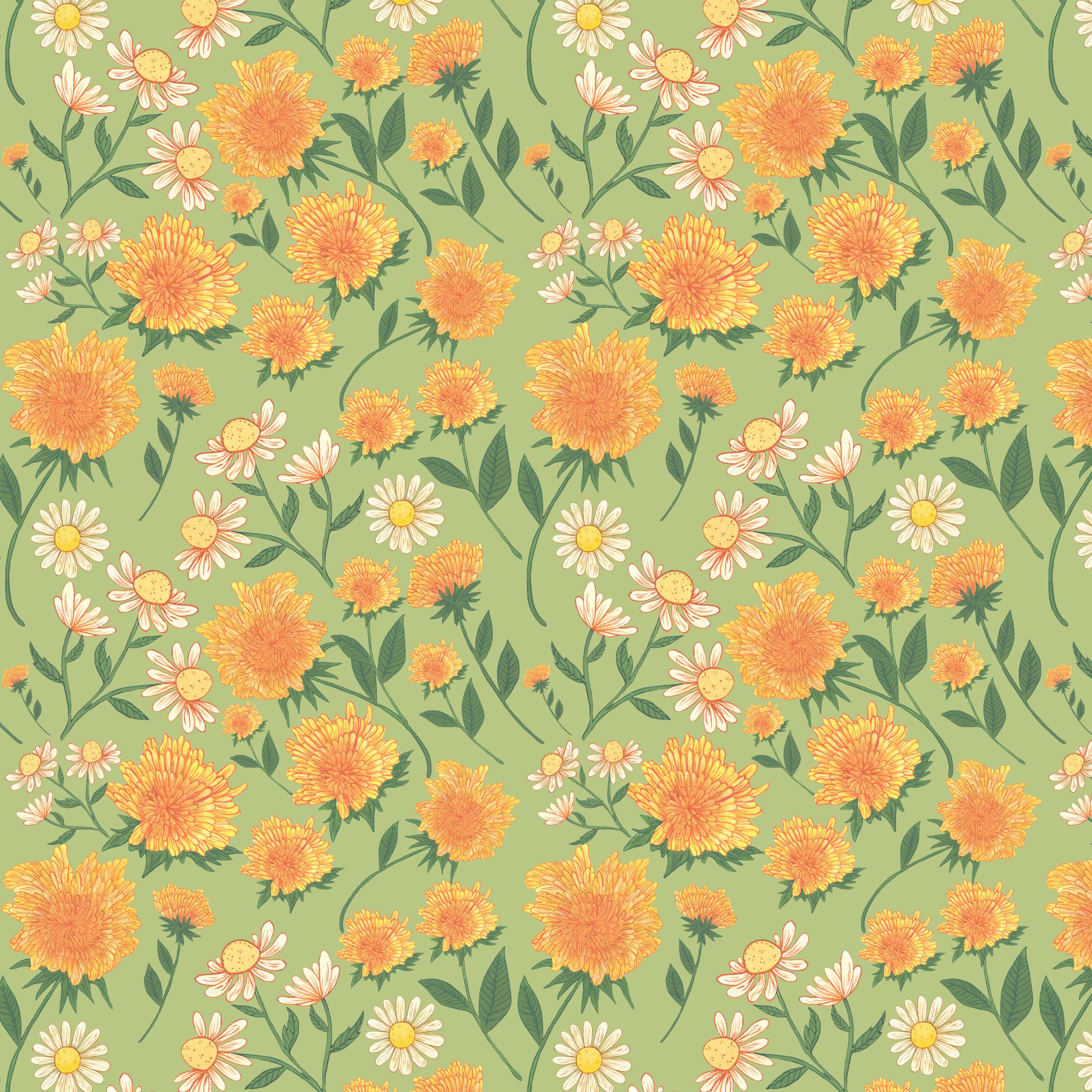dandelions and daisies s6.jpg