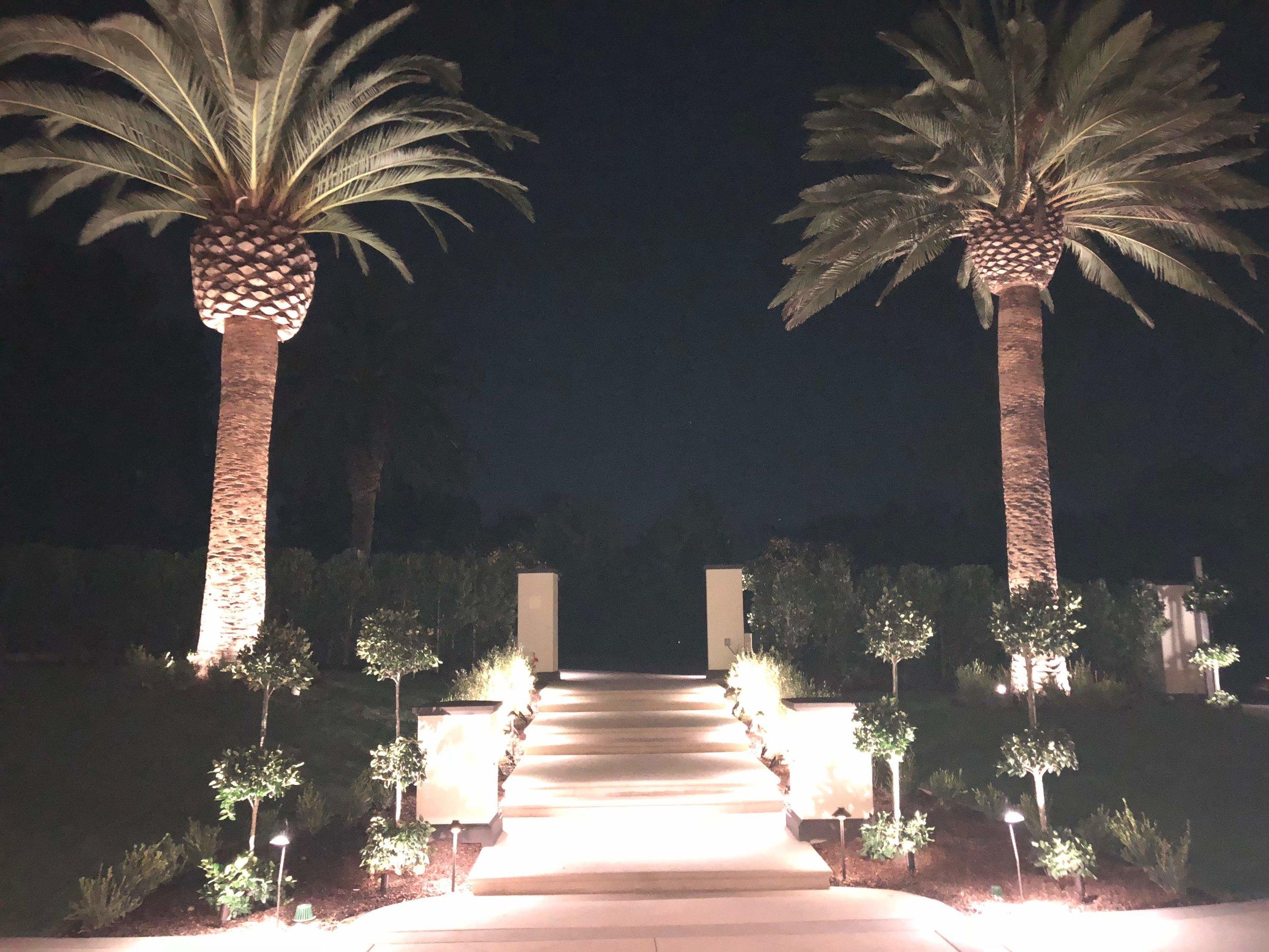 04_Night Pathway.jpg
