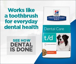Dental month t/d