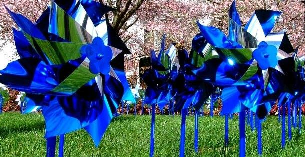 Pinwheels for a Purpose   The Power of ONE can Make a Difference!   How You Can Help - Click Here
