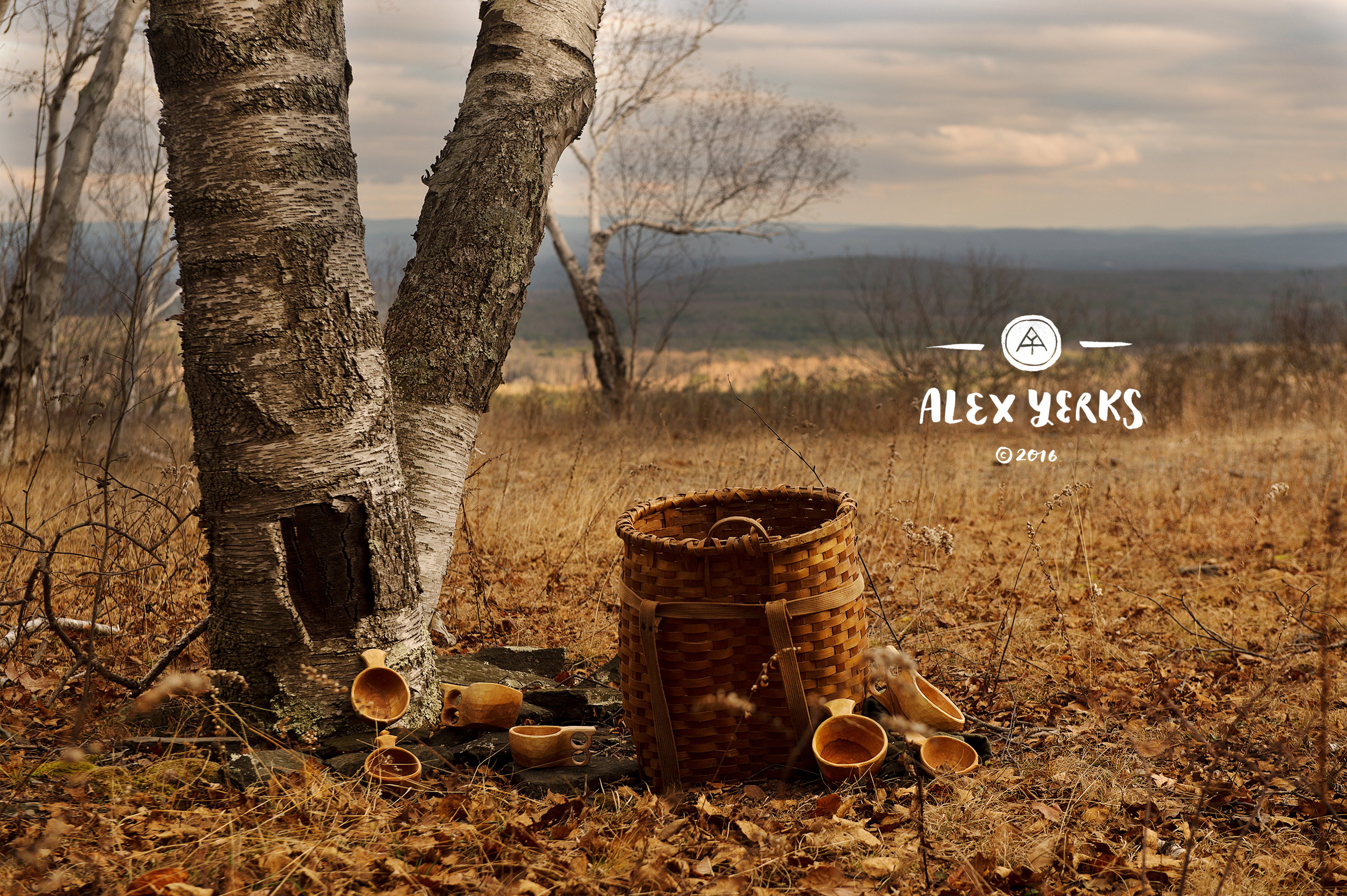 Alex lives and creates in the Catskills Mountains near Woodstock, in upstate New York. His inspiration, his raw materials - the forest is at the heart of everything he does.