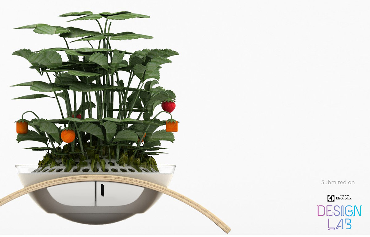 Wooki - Concept / Mini Vegetable growing system