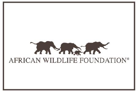 african-wildlife-foundation