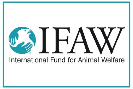 internation-fund-for-animal-welfare.png